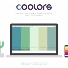 coolors-color-palettes