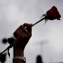 flor-marcha-contra-violencia-mulheres