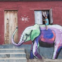 interactive-elephant-street-art-falco-one-south-africa-4