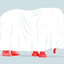 red-elephant-facebook-Jim Cooke