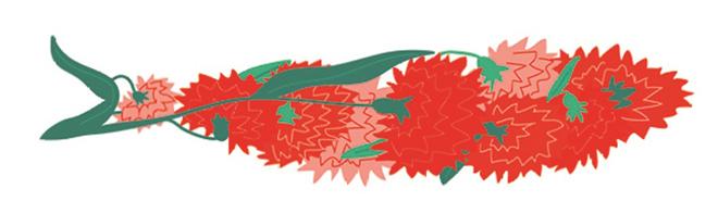 sardinha-bouquet de cravos (5)