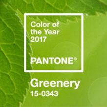 pantone-cor-ano-2017-bluebus