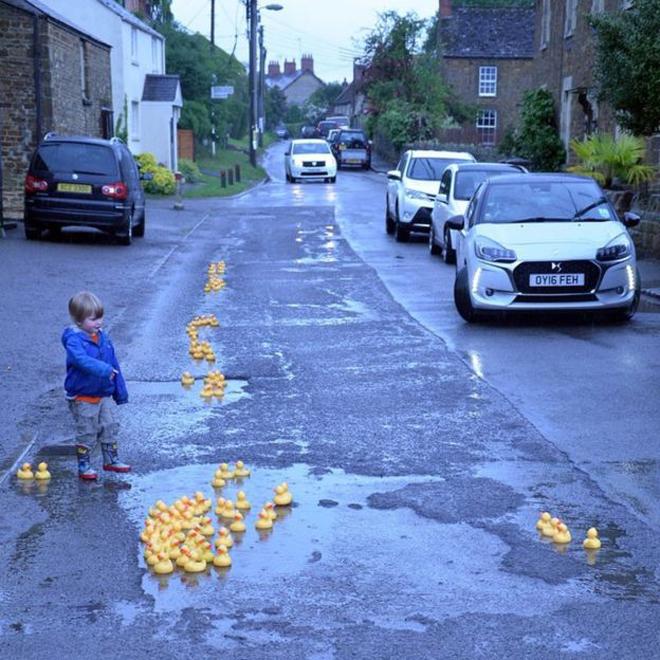 patos-amarelos-buracos-steeple- aston3