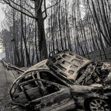 portugal-incendio-florestal-jun-2017