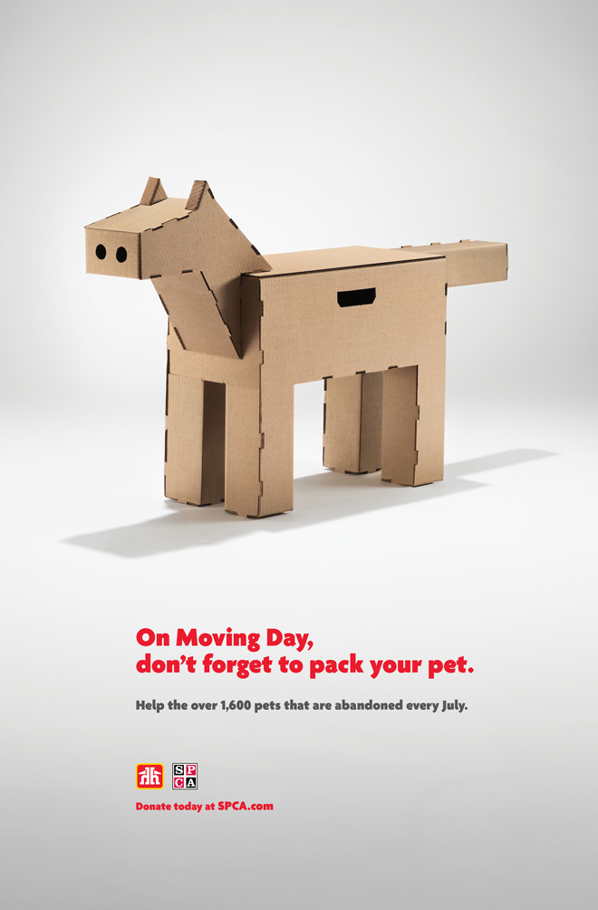 home-hardware-quebec-moving-day-pets2