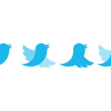 twitter-bird-sequence