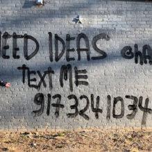 i-need-ideas-havas-ny-bluebus